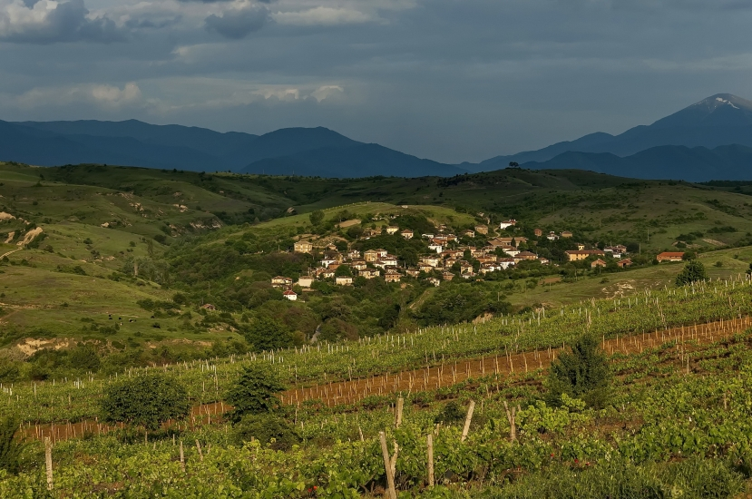 Village in the wine making region of Melnik, Bulgaria